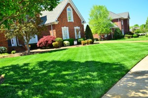 Lawn Care Greenwood, Indiana